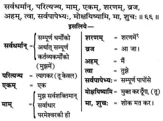 Bhagavad Gita Chapter 18 Verse 66